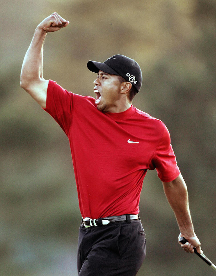 Tiger Woods screams after making the shot.