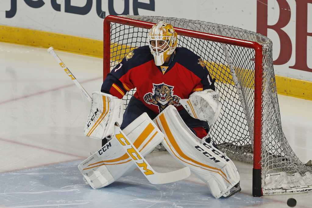 Roberto Luongo guards the goal.