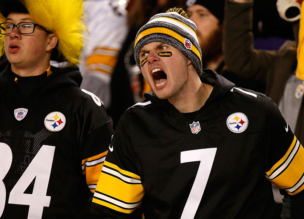 A Pittsburgh Steelers fan cheers during a game against the Baltimore Ravens.