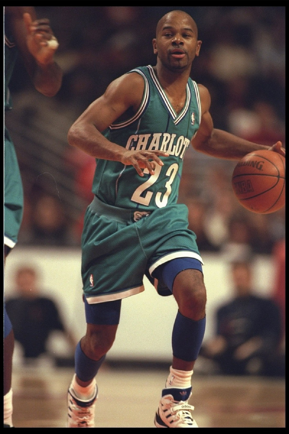 Guard Michael Adams of the Charlotte Hornets