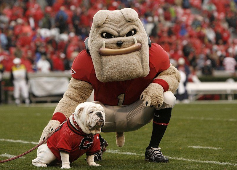 The Georgia Bulldogs mascots stands on the field during a game in 2016.