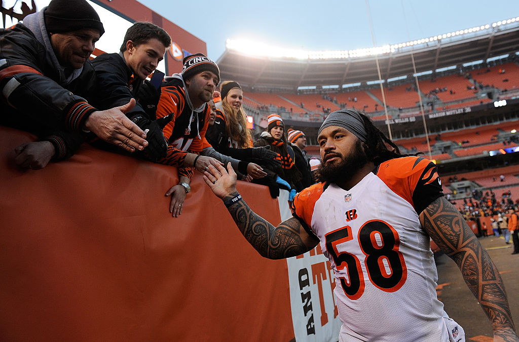 Rey Maualuga of the Cincinnati Bengals celebrates with fans after a win over the Cleveland Browns.