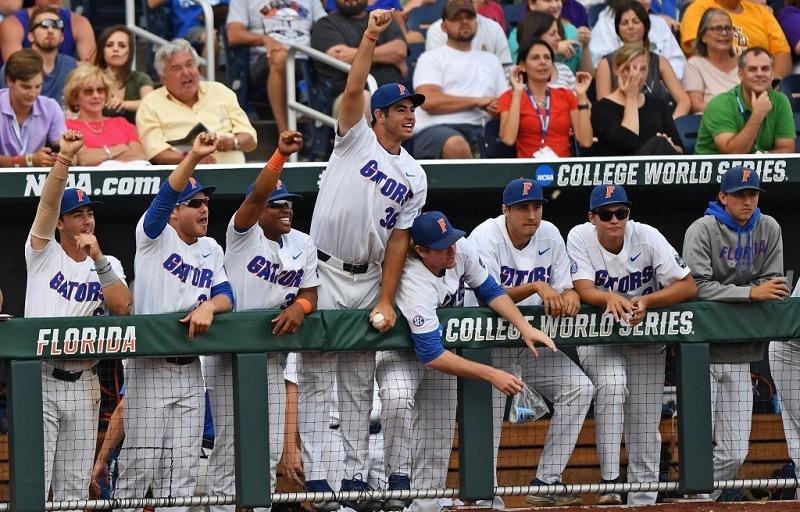 The Florida Gators celebrate a home run.