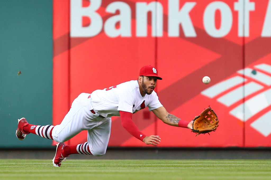 Tommy Pham dives for a catch.