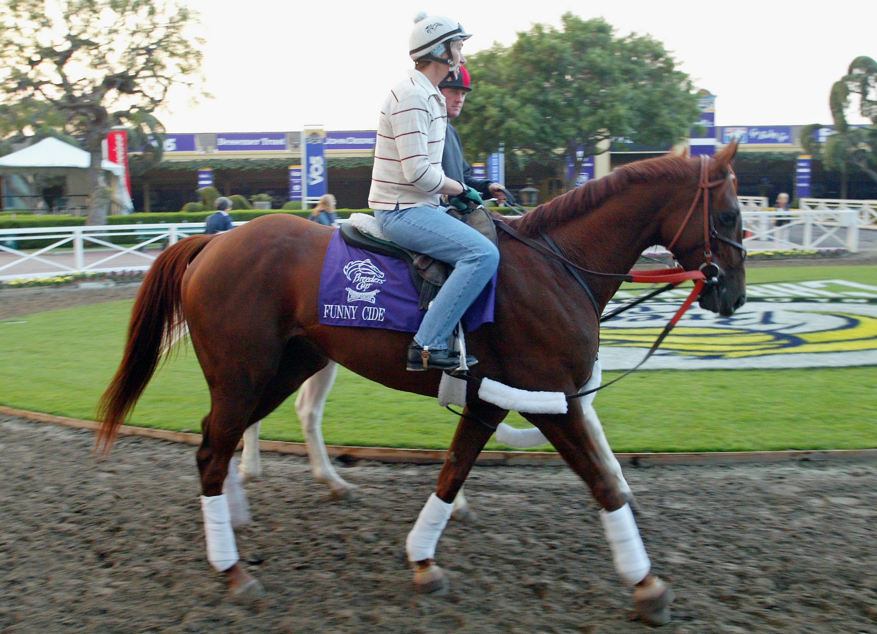 Funny Cide rides back to the stables