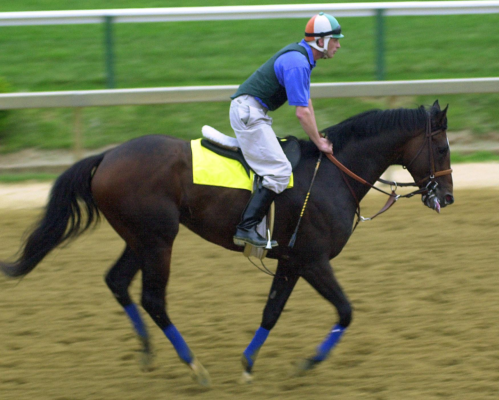 Kentucky Derby winner and Preakness Stakes favorite Fusaichi Pegasus trots during an early morning workout