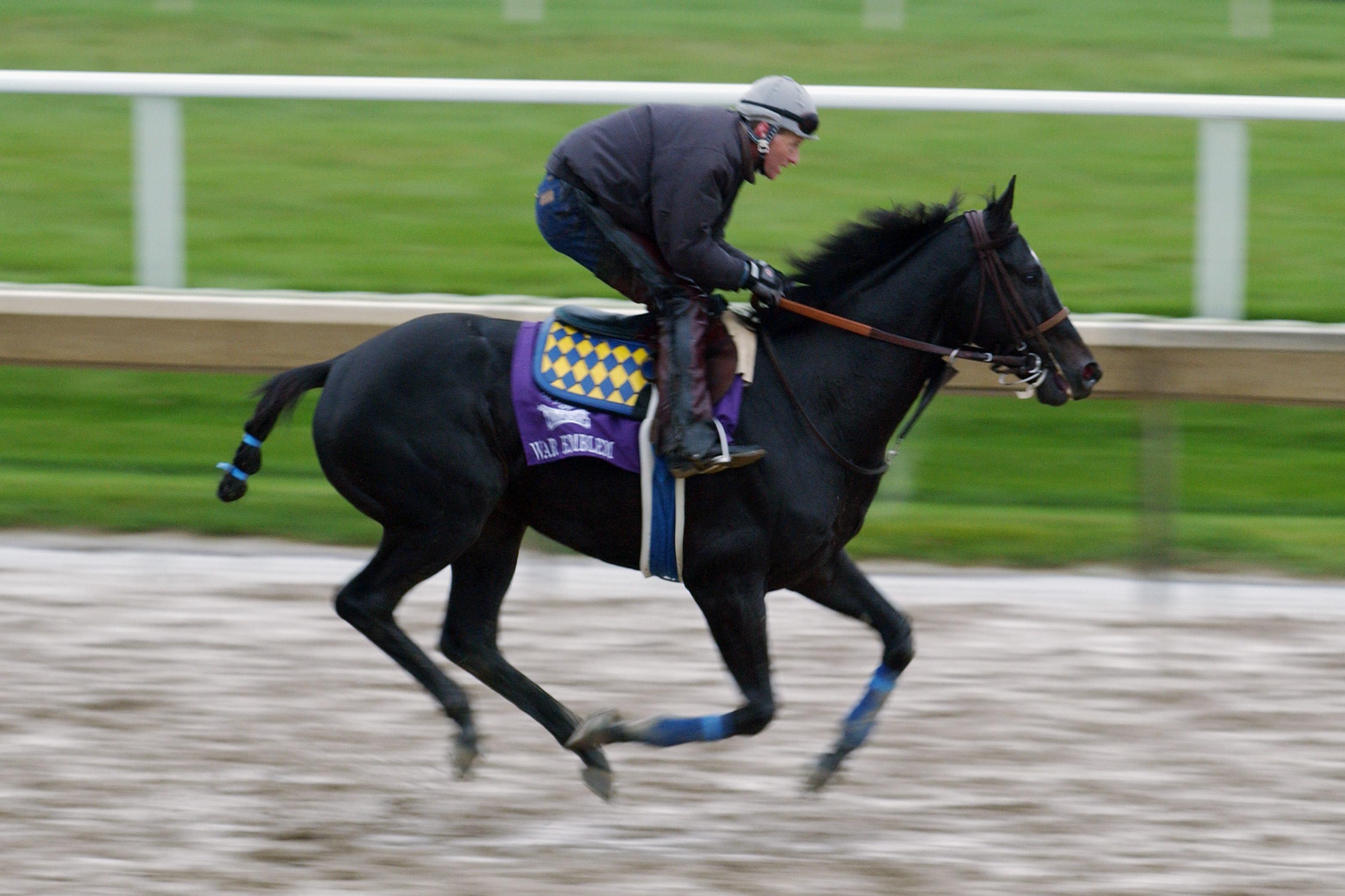 War Emblem horse