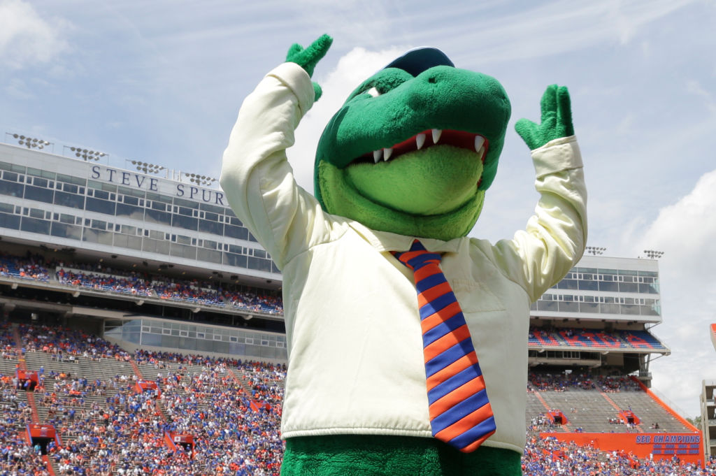Albert, the Florida Gators mascot