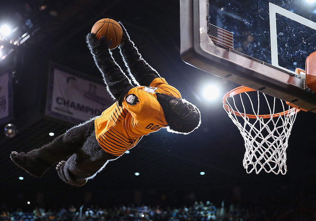 NBA mascots, such as the Gorilla at Phoenix Suns games, earn a nice chunk of change.