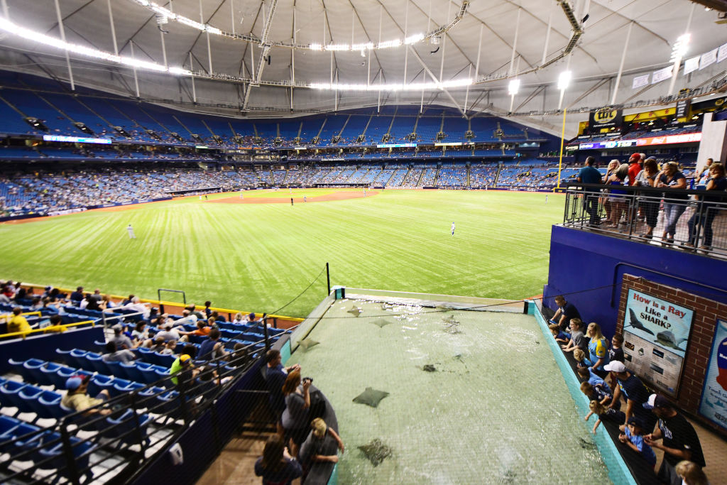 Stingray tank at Tropicana Field, home of the Tampa Bay Rays