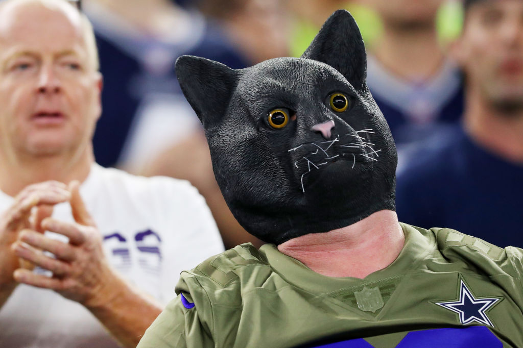A fan wearing a black cat mask attends the game between the Minnesota Vikings and the Dallas Cowboys