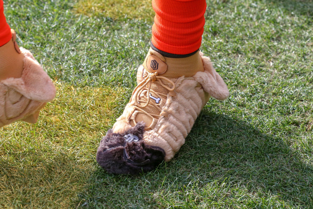 Cleveland Browns wide receiver Odell Beckham Jr. with custom dog cleats prior to a game
