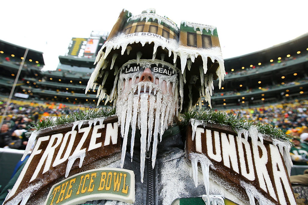 A Green Bay Packers fan dressed up at a home game
