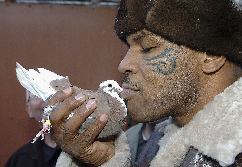 Mike Tyson once knocked out a sanitation worker who threw away his dead pigeon.