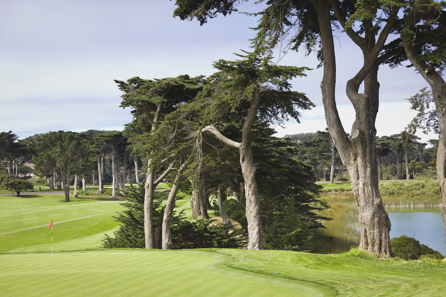 18th hole of the Harding Park Golf Course