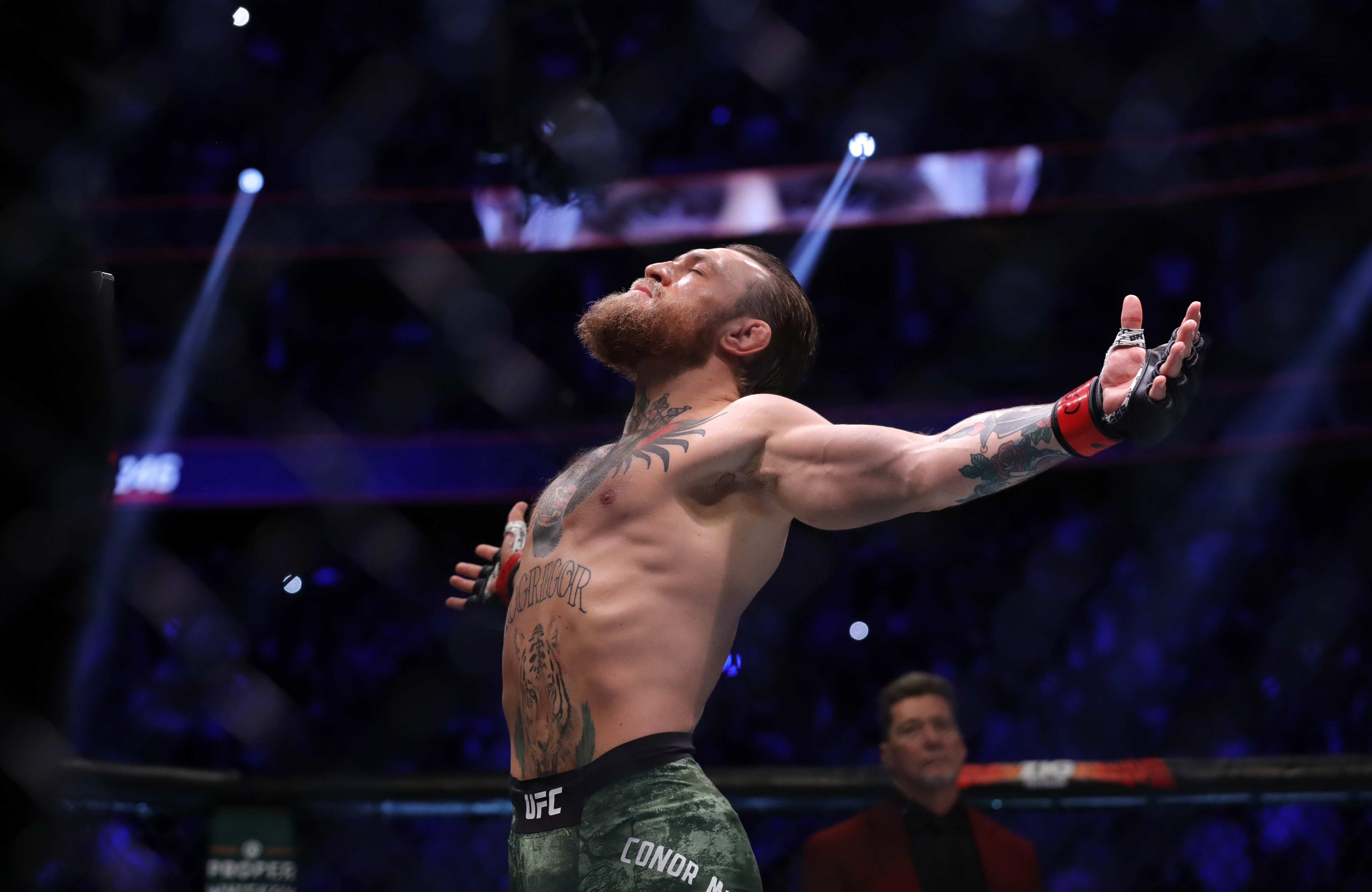 Conor McGregor soaks in the moment before a UFC fight