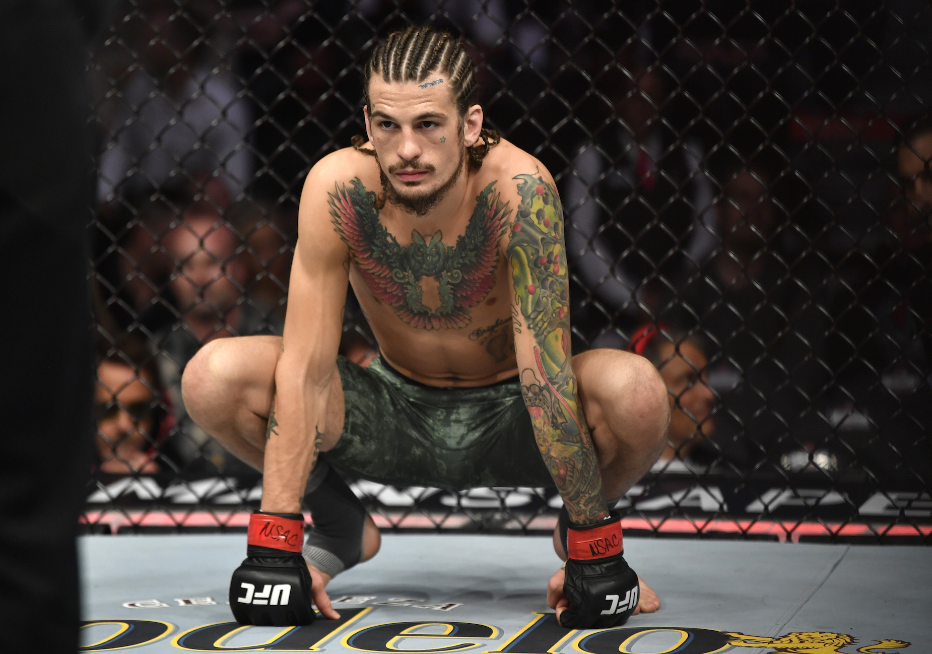 Sean O'Malley might be using his hair to play mind games with Marlon Vera.