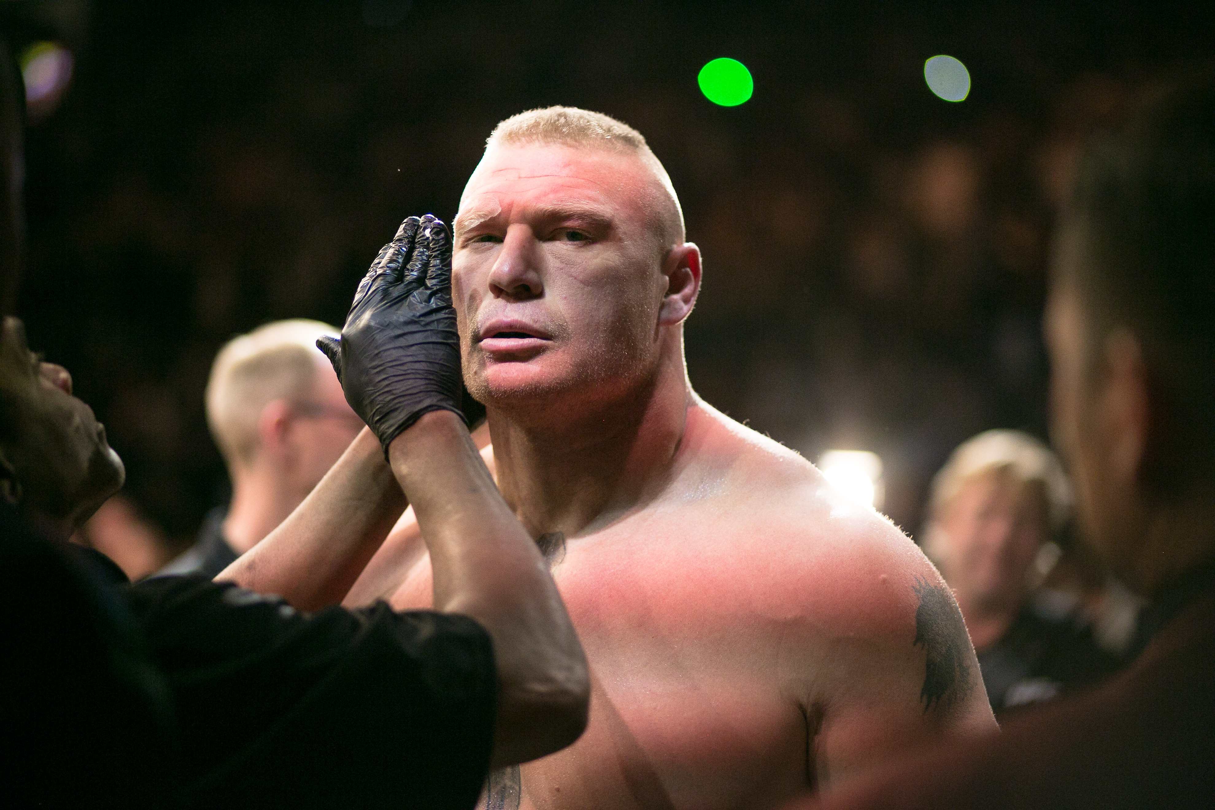 WWE star Brock Lesnar