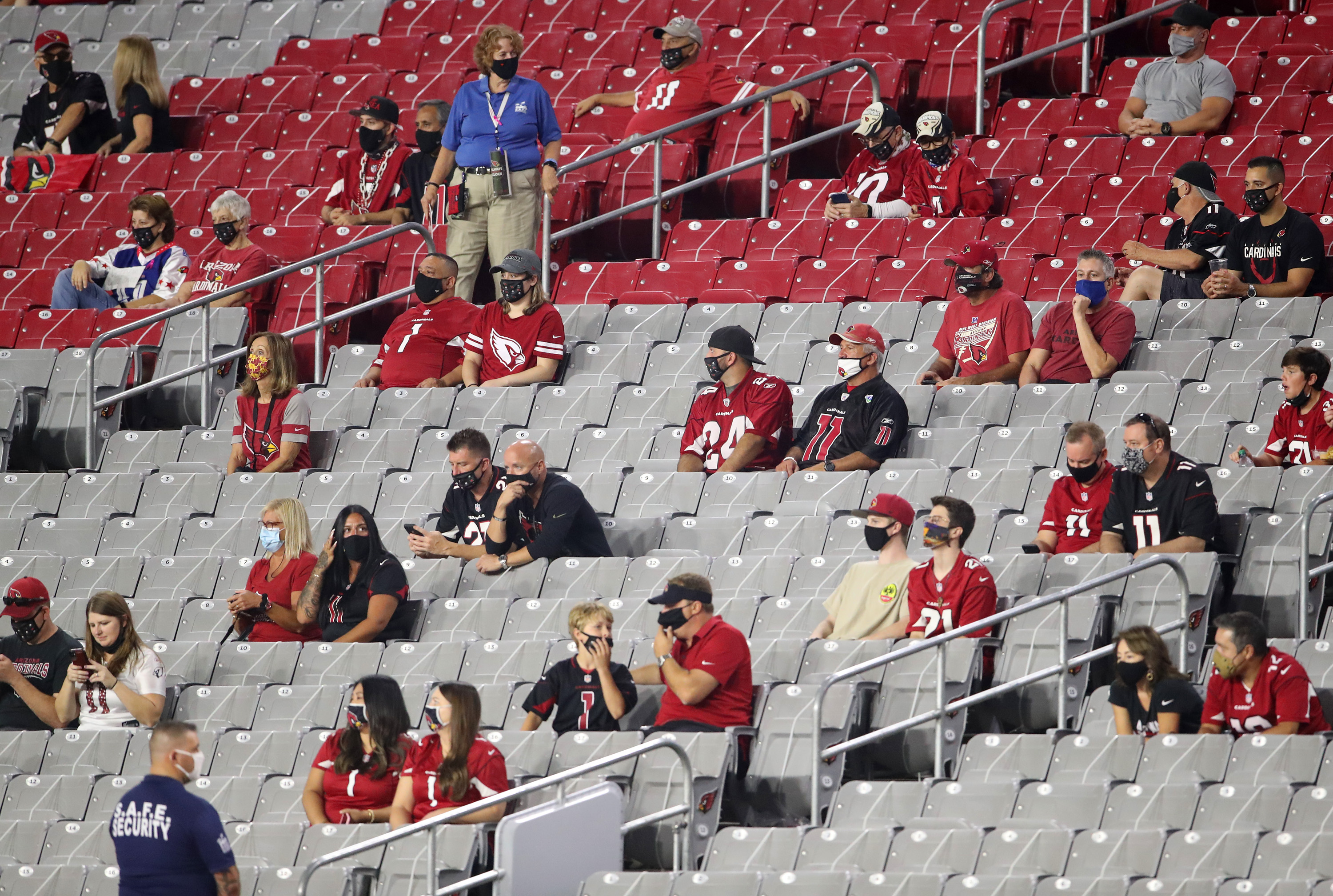 NFL fans sitting in the stands for a Cardinals game