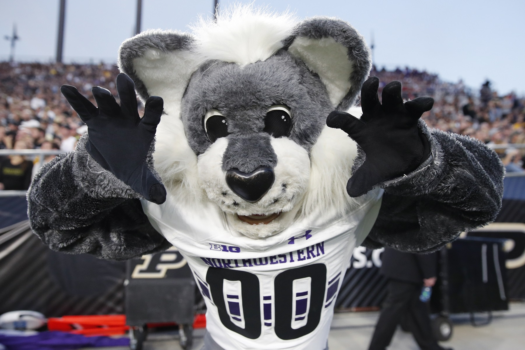 Darren Rovell has a $238,000 interest in seeing Northwestern beat Ohio State in college football