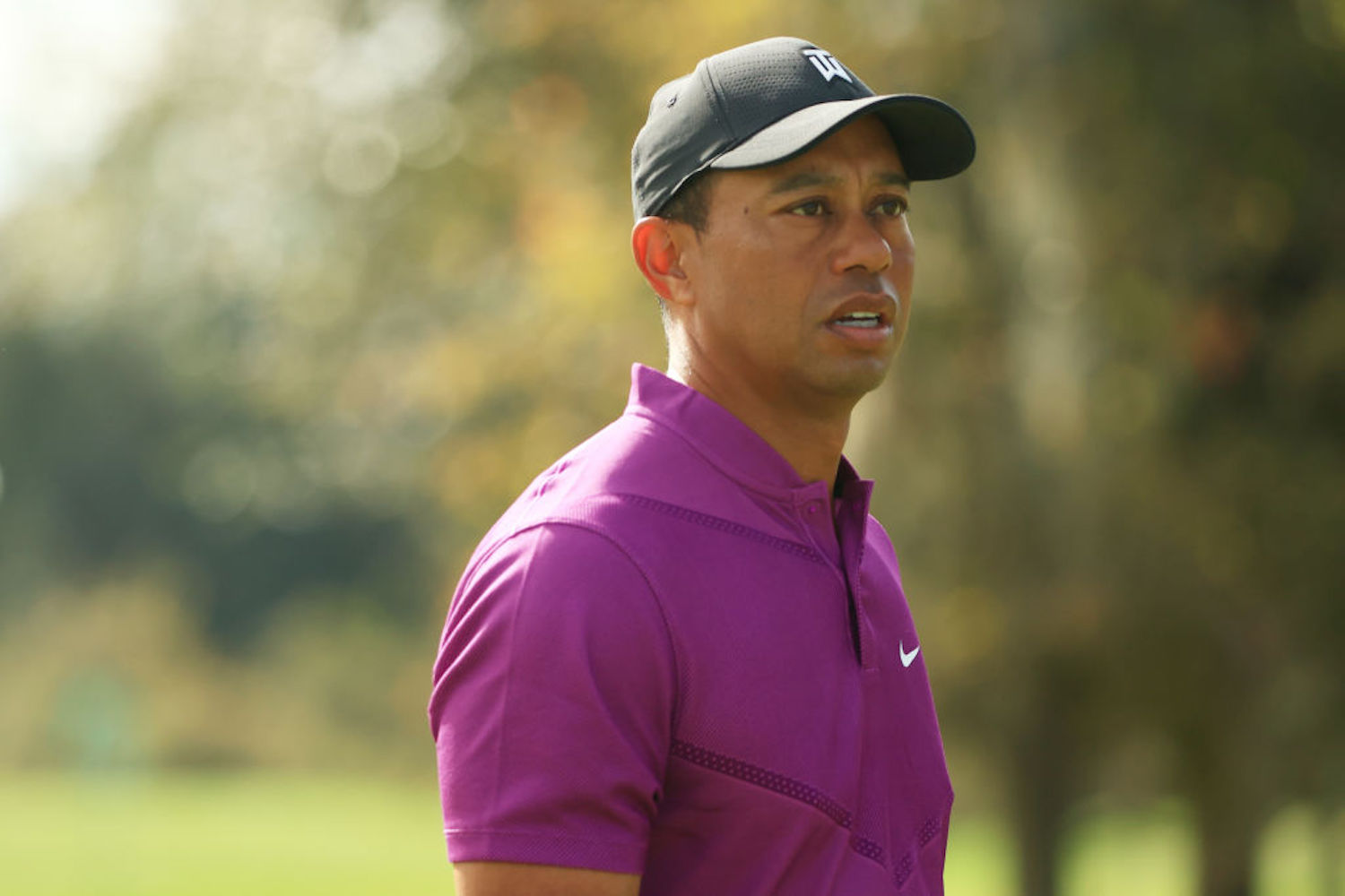 Tiger Woods has been fully healthy for the first time in a while, but another back surgery will keep him sidelined for a few months.