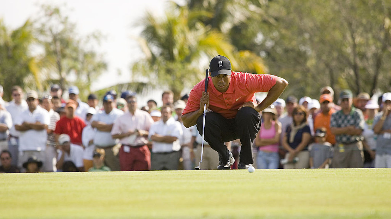 Tiger Woods is arguably the greatest golfer to ever live, but he almost quit the sport in his prime to become a Navy SEAL.