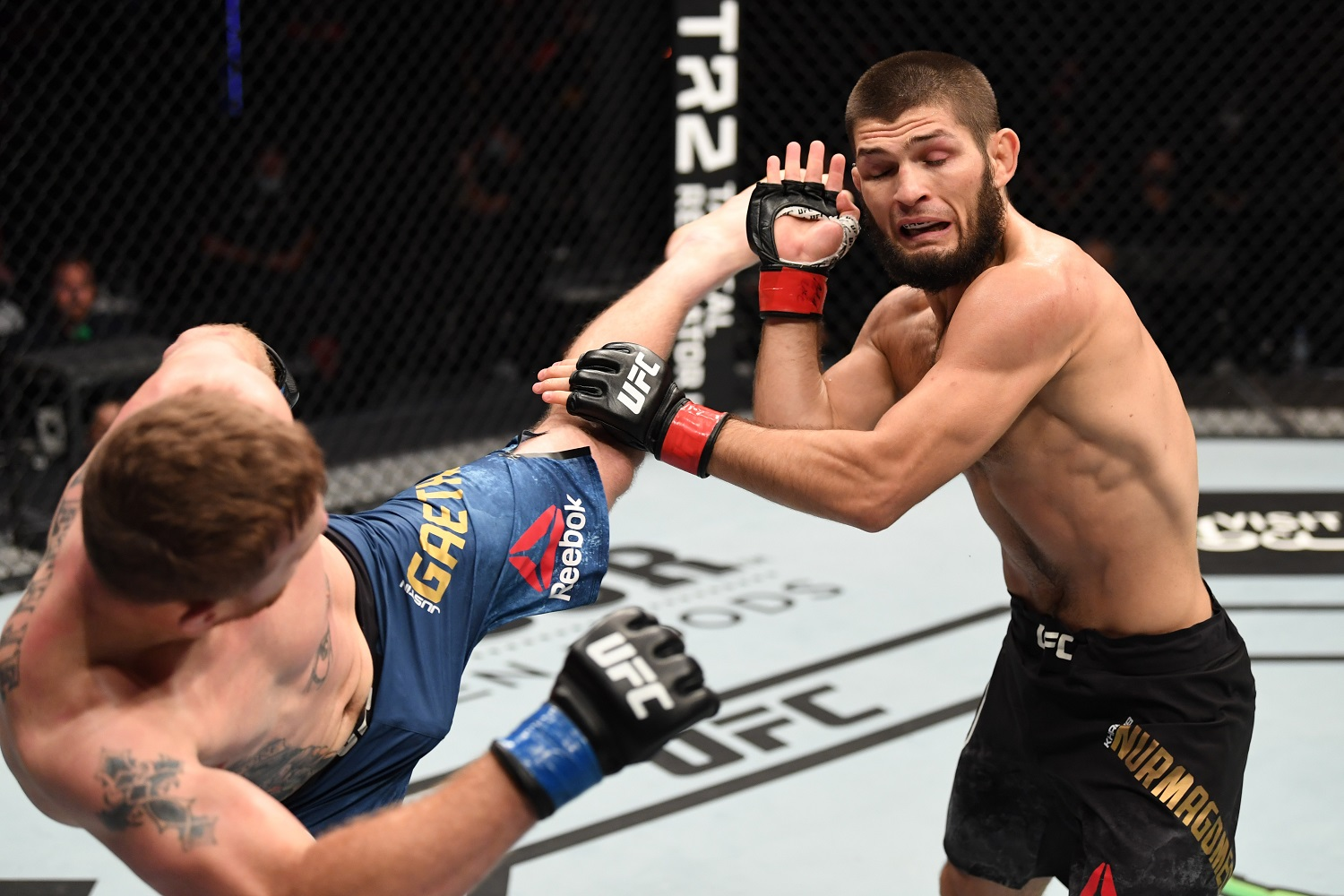Khabib Nurmagomedov Hints He's Kicking the UFC To the Curb in Favor of His Real Love