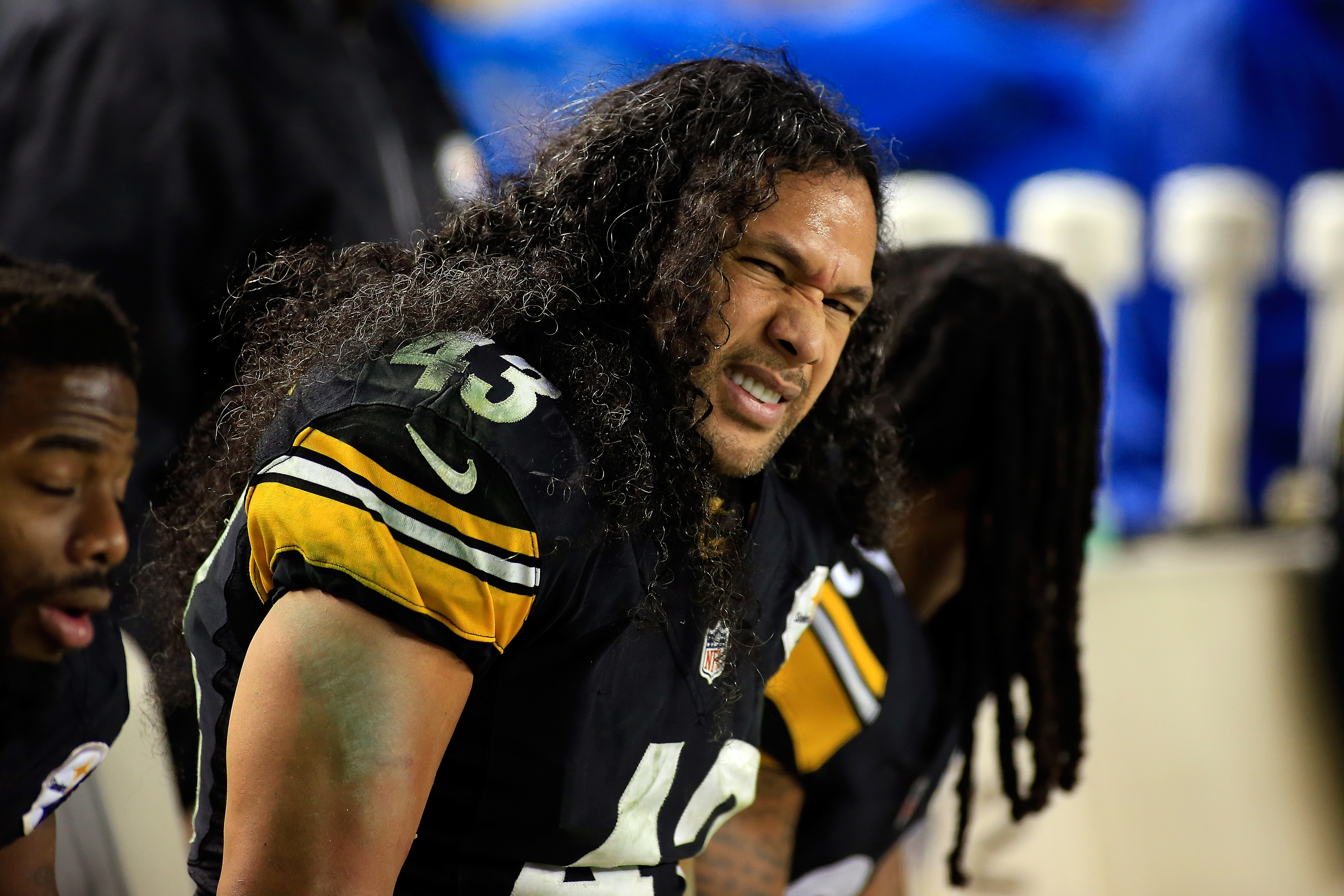 Pittsburgh Steelers Legend Troy Polamalu Got His Famous Hair Insured for $1 Million