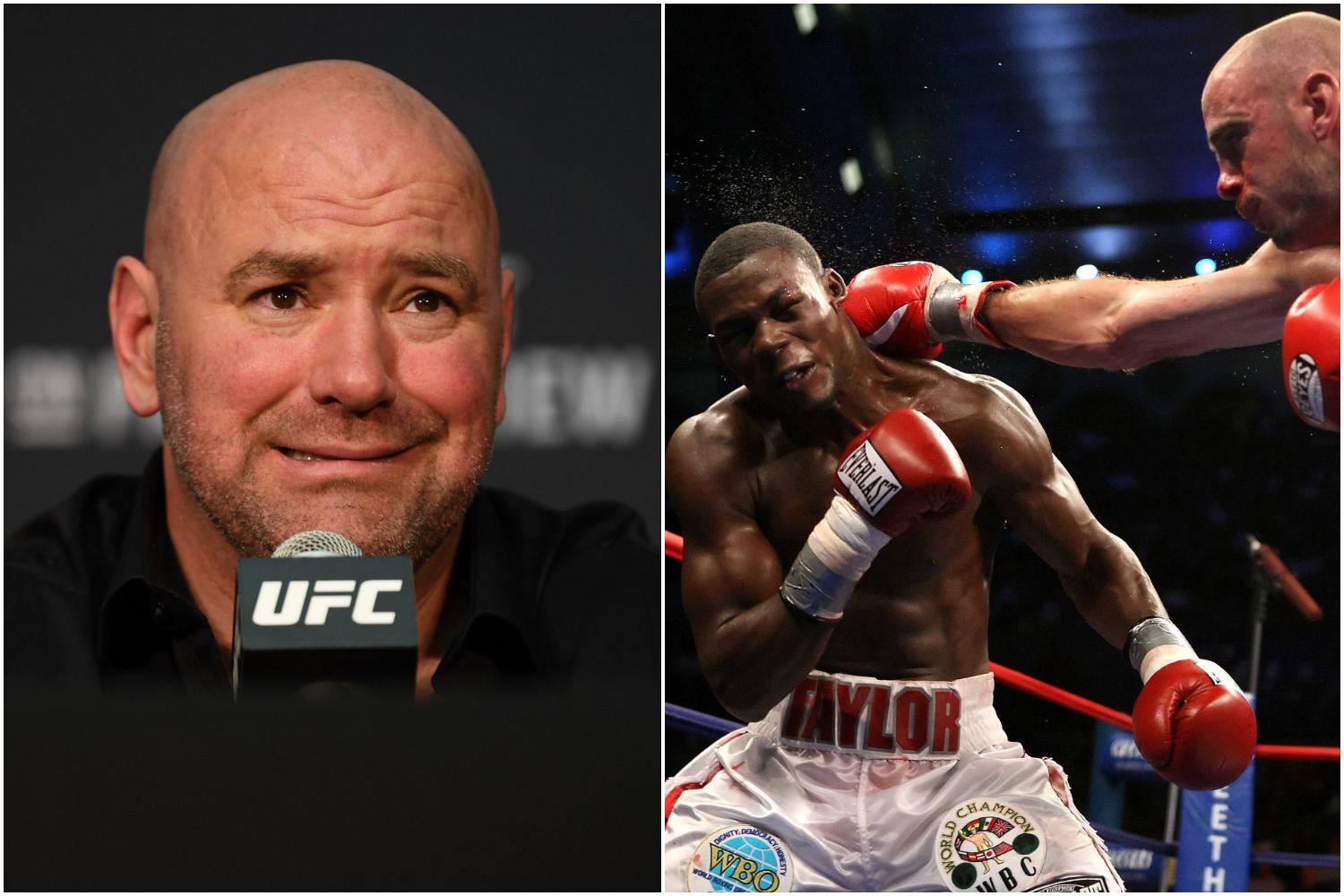 Dana White is Missing $1 Million Because of Former Boxing Star Jermain Taylor